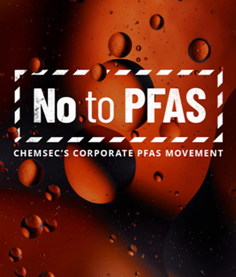 """Forever Chemicals – Why Joining the Movement to Say """"No To PFAS"""" Matters"""