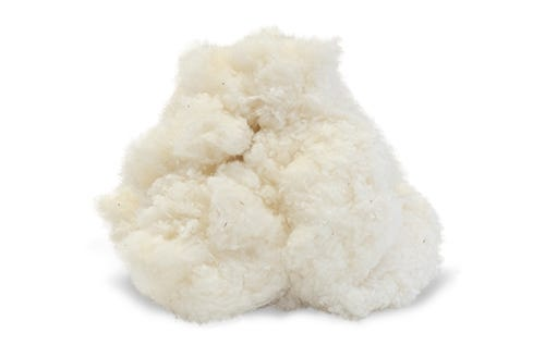 Fluffy Chunk of Organic Cotton